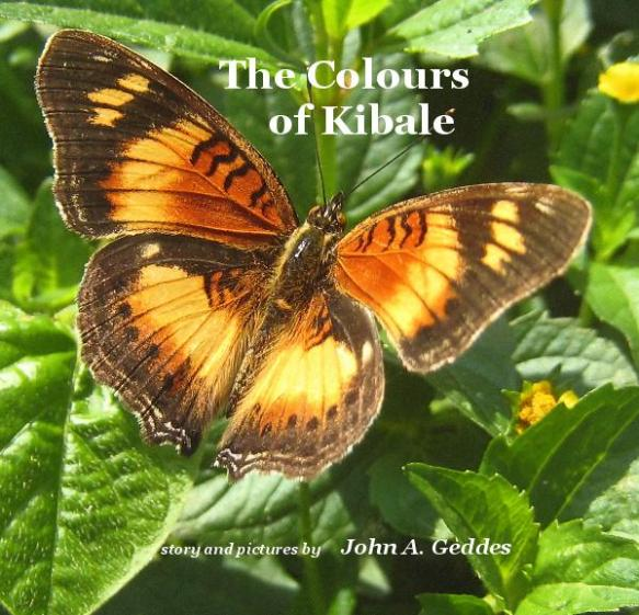 Colours of Kibale Book cover