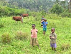 kan]yawara kids3501